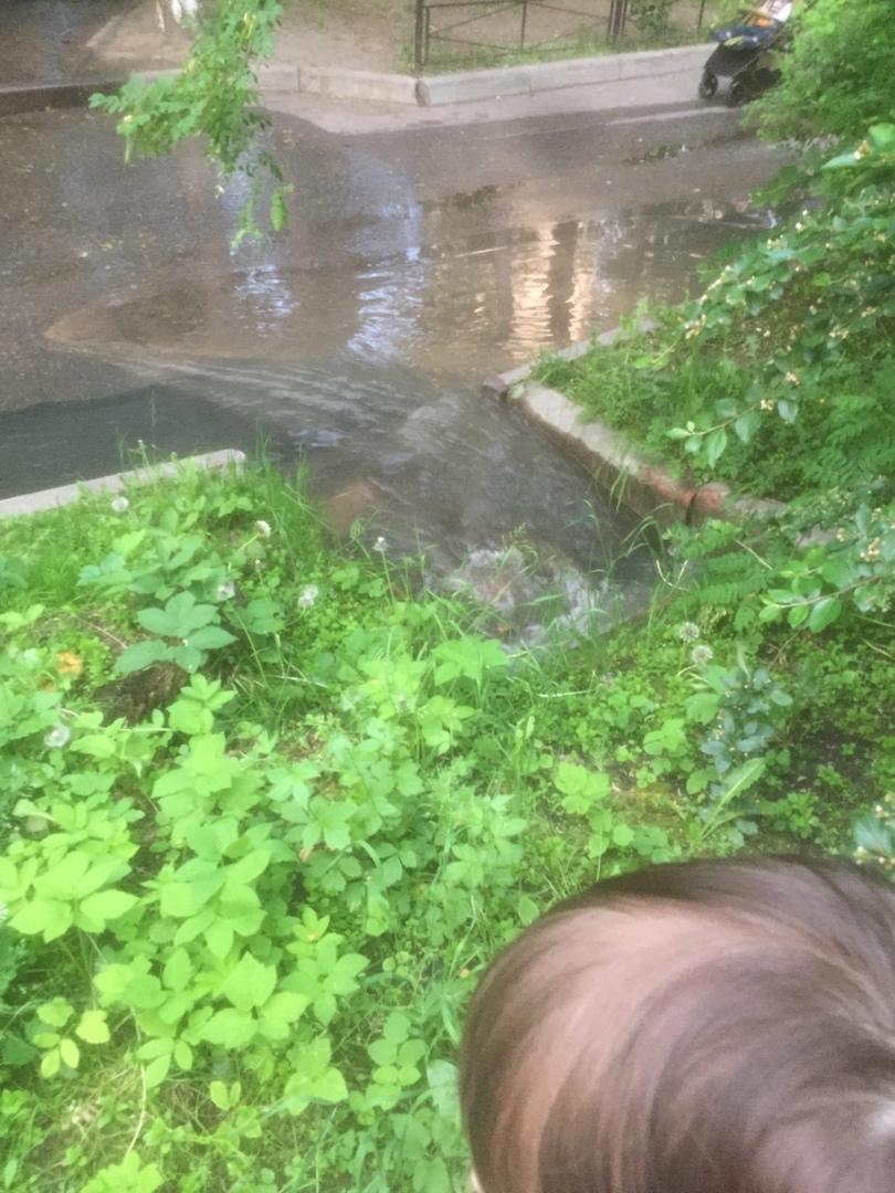 На Замшиной улице, на территории школы №186 произошёл прорыв трубы. Вода течёт примерно с 11 часов д...