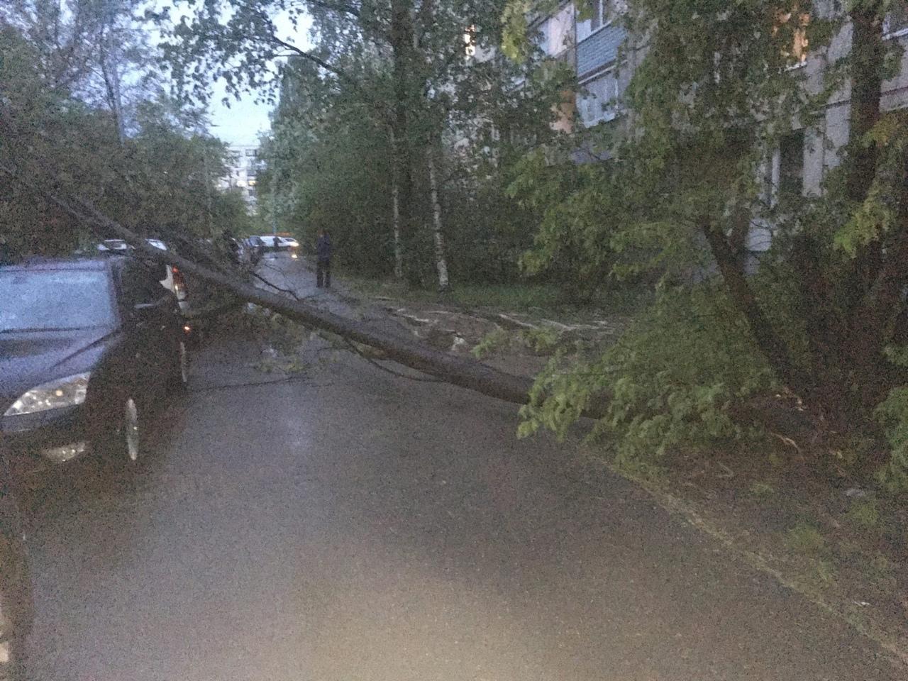 Движение за домом 20к3 на Купчинской улице временно затруднено...
