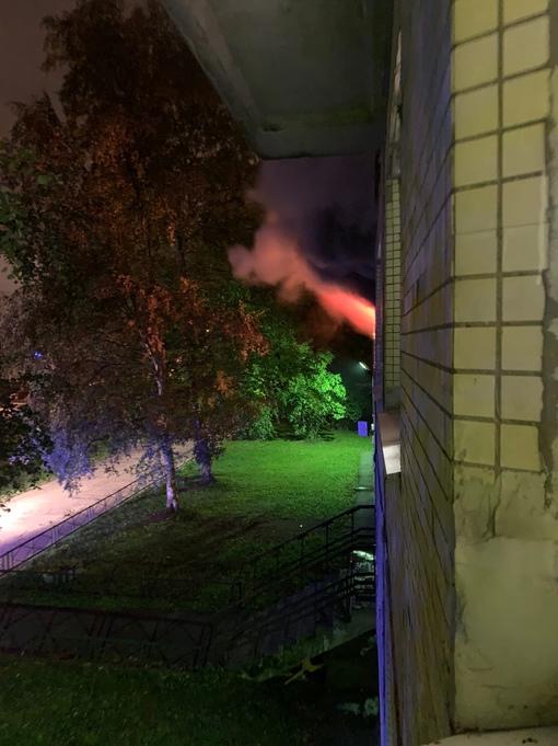 Пожар в доме 17 на проспекте Кузнецова В 5:21 вызвали мчс 3 пожарные машины 2 скорые Сильное задымл...