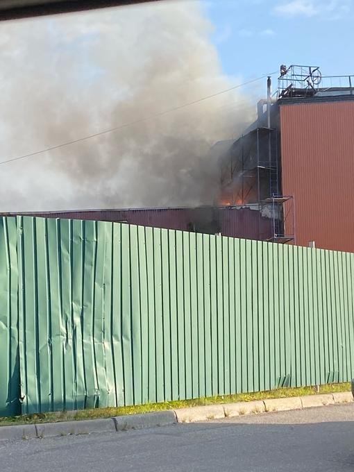 Пожар на проспекте Александровской Фермы 29