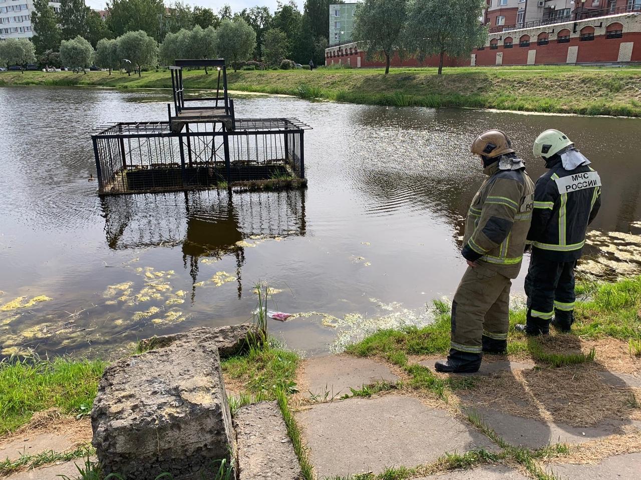Опять утята упали в водозабор реки Новая у дома Маршала Жукова 54к6. Утка плавает вокруг и крякает. ...