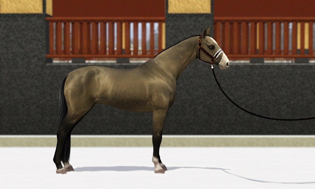 Регистрация лошадей в RHF 1.1 - Страница 37 PYEkIclHsa4