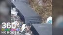 Надгробия героев пограничников выбросили на свалку в Приморье