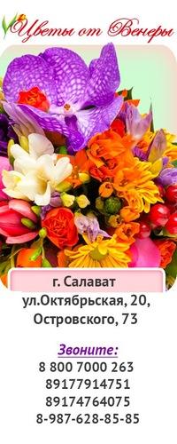 В салавате цветы с доставкой