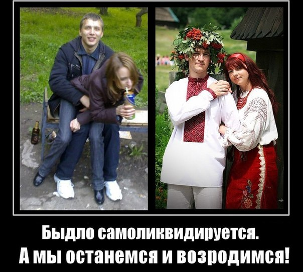 http://cs306501.vk.me/v306501841/31ea/clUH-nUu9Rw.jpg
