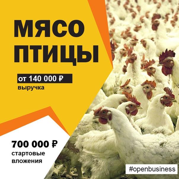 💡 Мясо птицы. Бизнес-план производства 📢Мясо птицы, еще в начале прошлого века...