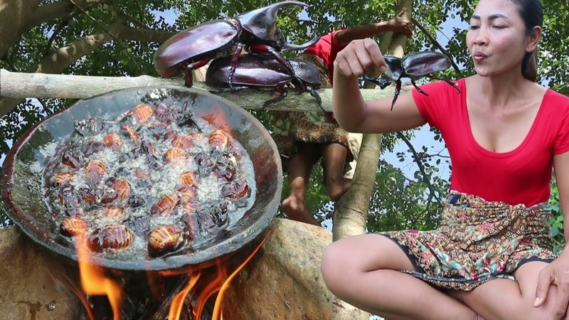 Survival skills Find insects on tree fried on clay for food - Cooking insects eating delicious