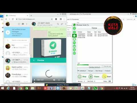 WhatsApp Sender Pro V6.4 фикс после обновления Whatsapp