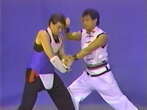 HUNG GAR SPARRING TECHNIQUE by David Lee