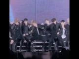 BTS - No more dream