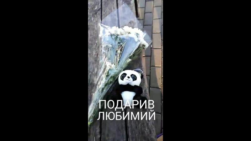 VID_118660721_073743_839.mp4