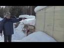 АТ158 Червячник круглогодичный наш