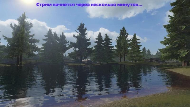 Вечерняя NewZ)