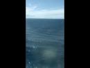 По морям, по волнам 🛳️🌊