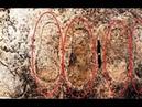 Отпечатки сандалий на граните в Индии, которым много тысяч лет.Неудобный артефакты 6 часть 1