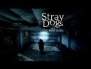 Stray Dogs I Tsai Ming liang 2013