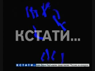 Руки из темноты - нижегородские студенты своим искусство выиграли деньги Егора Крида