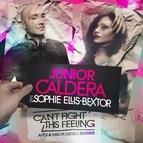 Junior Caldera альбом Can't Fight This Feeling (feat. Sophie Ellis-Bextor)