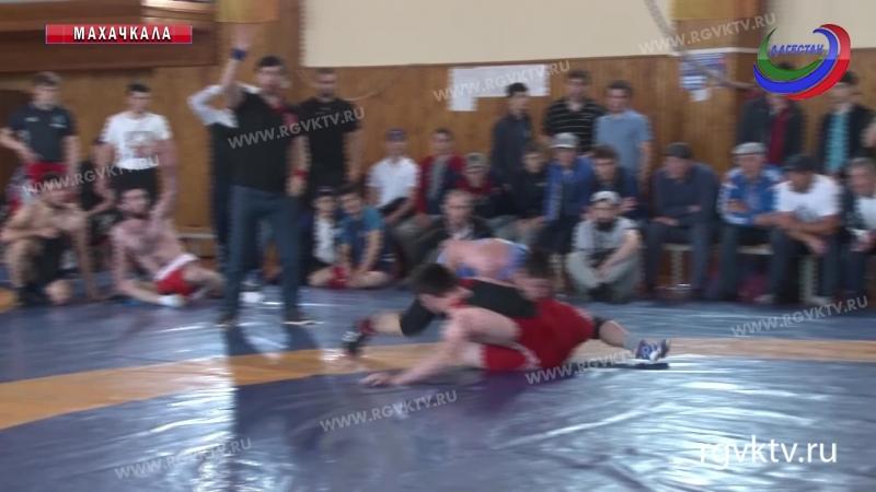 В Махачкале завершился чемпионат Дагестана по греко-римской борьбе