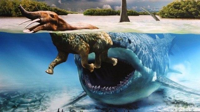 моменту самое большое животноекотрое когда либо анаселяло нашу плануту