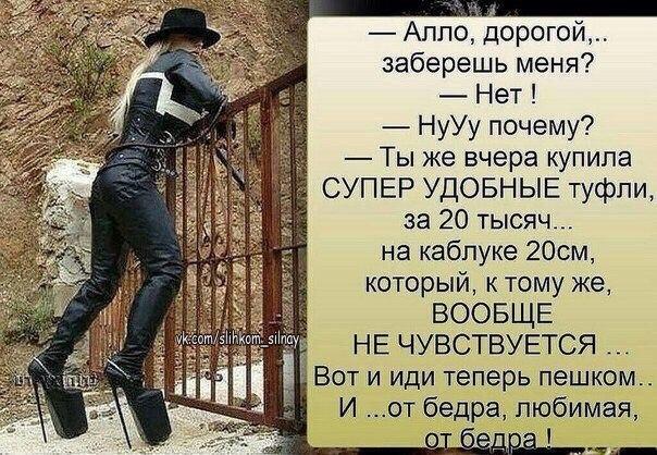 https://pp.userapi.com/c543106/v543106298/12e1a/p4QrAO6tUe4.jpg