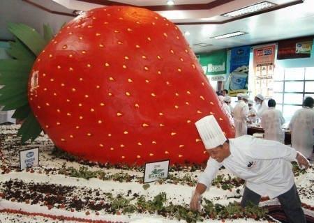 Самый огромный в мире торт фото