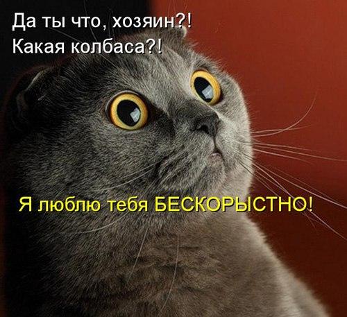 http://cs323123.userapi.com/v323123517/17d7/3J4BXaONC4E.jpg