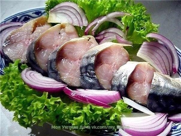 Рыба    и морепродукты - Страница 6 HTIgJAS04iU