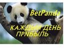 Reliable Sports Betting RSB обзор проекта Мой скайп 79225325808 Nina