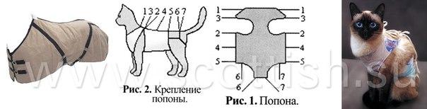 Выкройки попоны для кошек своими руками 48