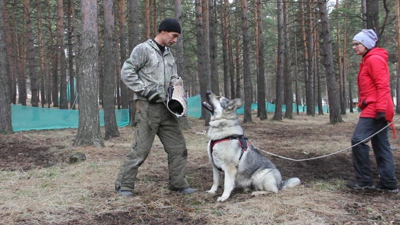 Тренинг по защите в Первоуральске.ВЕО СУ Ювелир...8900