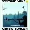 ⠀ ⠀ ⠀ ⠀ ⠀ ⠀ ⠀ ⠀ᴍᴇᴅɪᴀ ʙɪsᴍɪʟʟᴀʜ on Instagram Оxотниk убил cемью волkа Кому не сложно оставляйте хотя бы точку в комментариях что бы публикация р