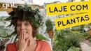 Laje de casa com diversidade de plantas | Jardinagem | Carol Costa