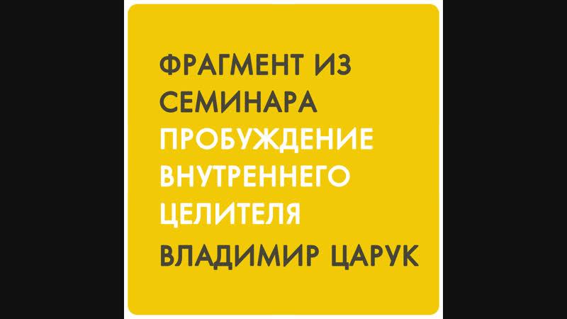 Фрагмент из семинара Владимира Царука