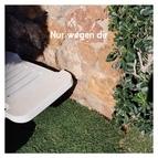 AnnenMayKantereit альбом Nur wegen dir