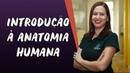 Introdução à Anatomia Humana Brasil Esola