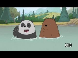 Мы обычные медведи 2х12
