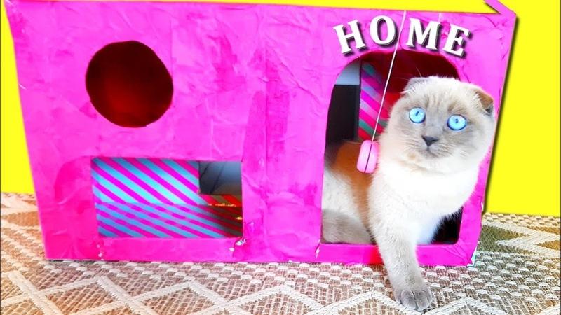 КАК сделать Розовый ДОМИК для КОШКИ из коробки от кукол ЛОЛ? Новый домик для котят СВОИМИ РУКАМИ DIY