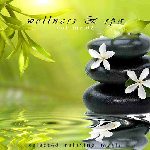 Jens Buchert альбом Wellness & Spa Volume 2