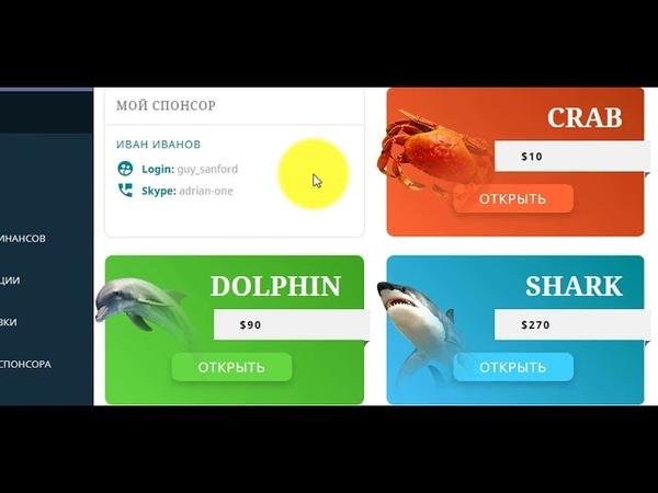 Маркетинг Инфо Океан