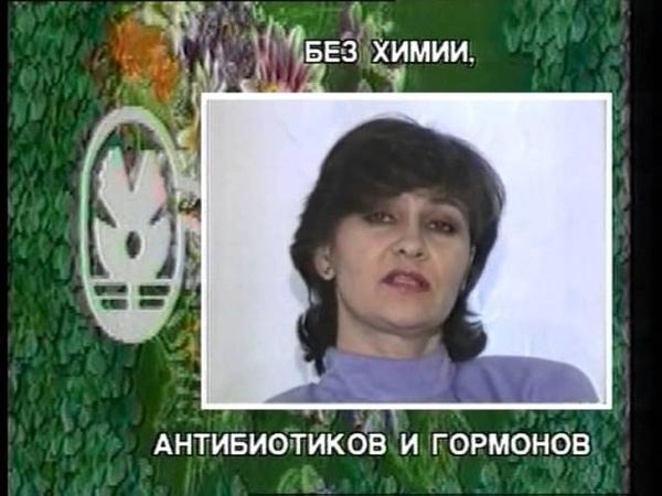 Дон Кихот или герой нашего времени 1999 г