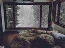 Warm cozy bed on a snowy day reddit - Create, Discover and Share Awesome GIFs on Gfycat