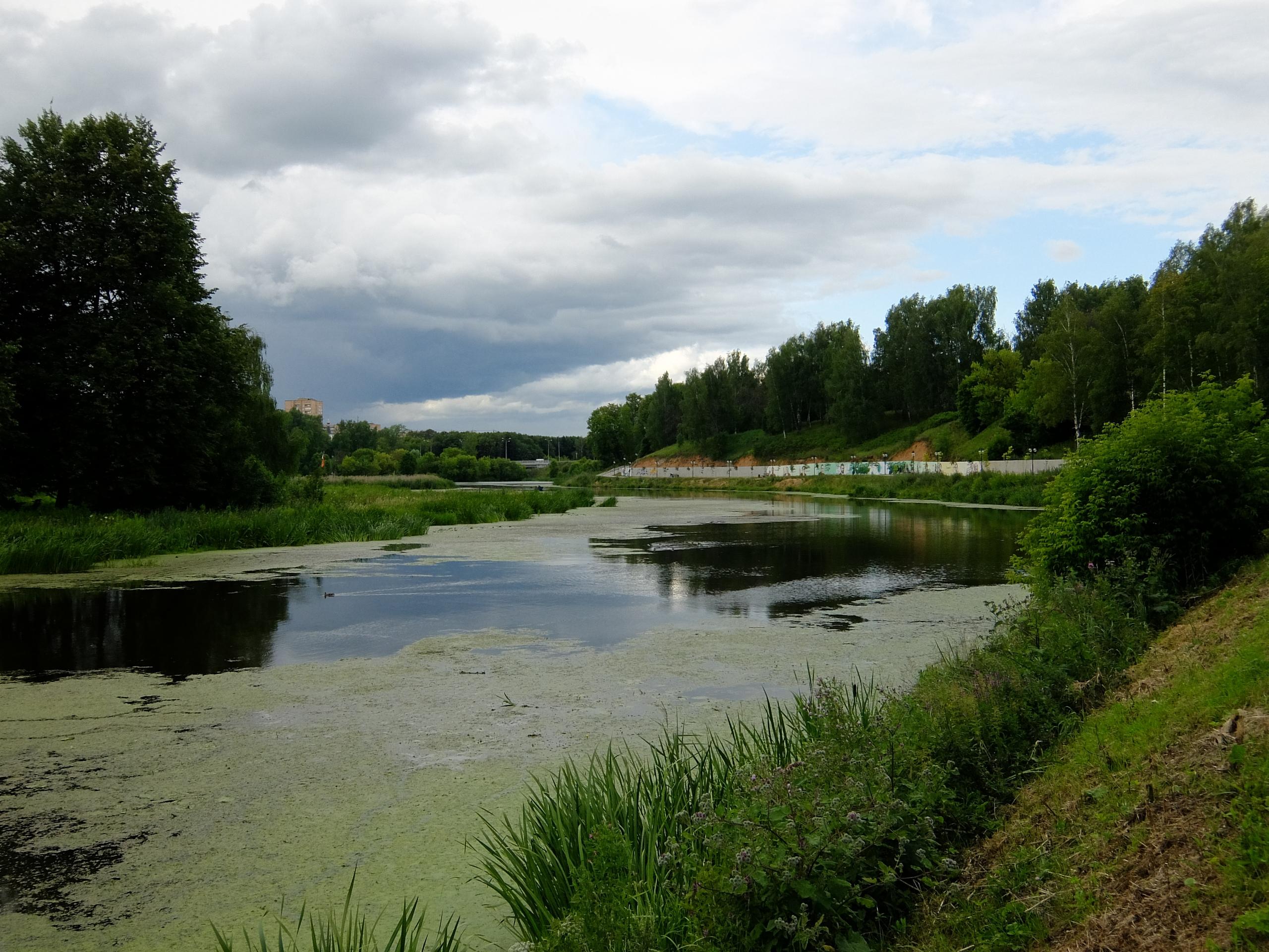 Общий вид на реку Сестра