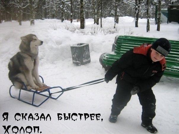 http://cs320925.vk.me/v320925341/6481/ElTlStgV6f4.jpg