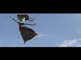 los lobos ft. arturo sandoval - walk don't rango (2011)(gera's hand-made rango version)