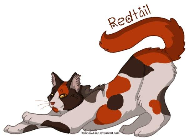 Кот воители ярохвост