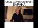 Анекдот про барана и спецназ)