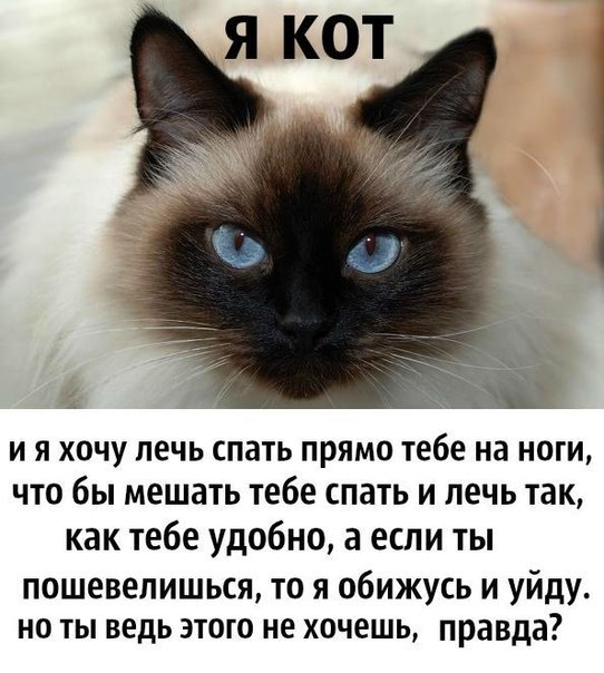 http://cs312324.vk.me/v312324989/6d52/3faTcLa4Uo0.jpg