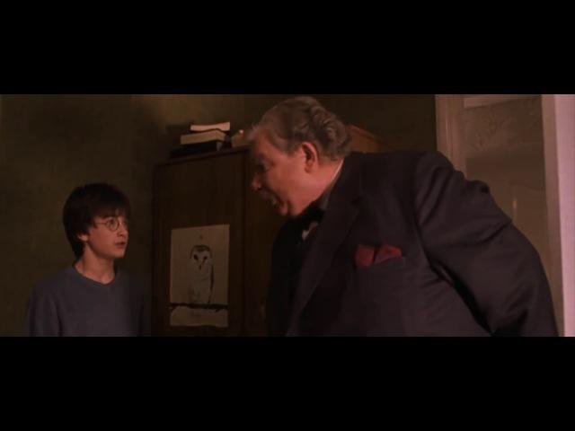 На случай важных переговоров: Какого дьявола ты здесь ШУМИШЬ? (Дядя Вернон)