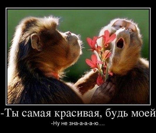 Юлия Дубиновская   Краснодар